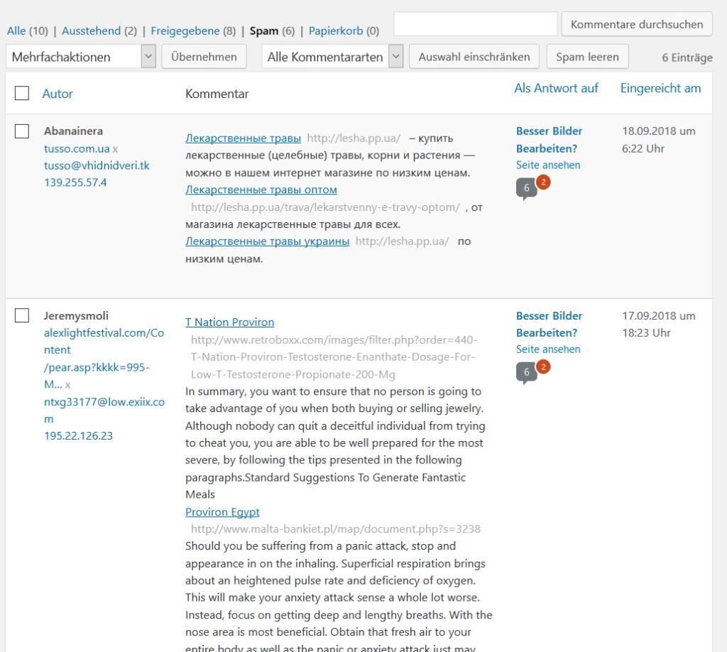 XSS landet im WordPress Spam
