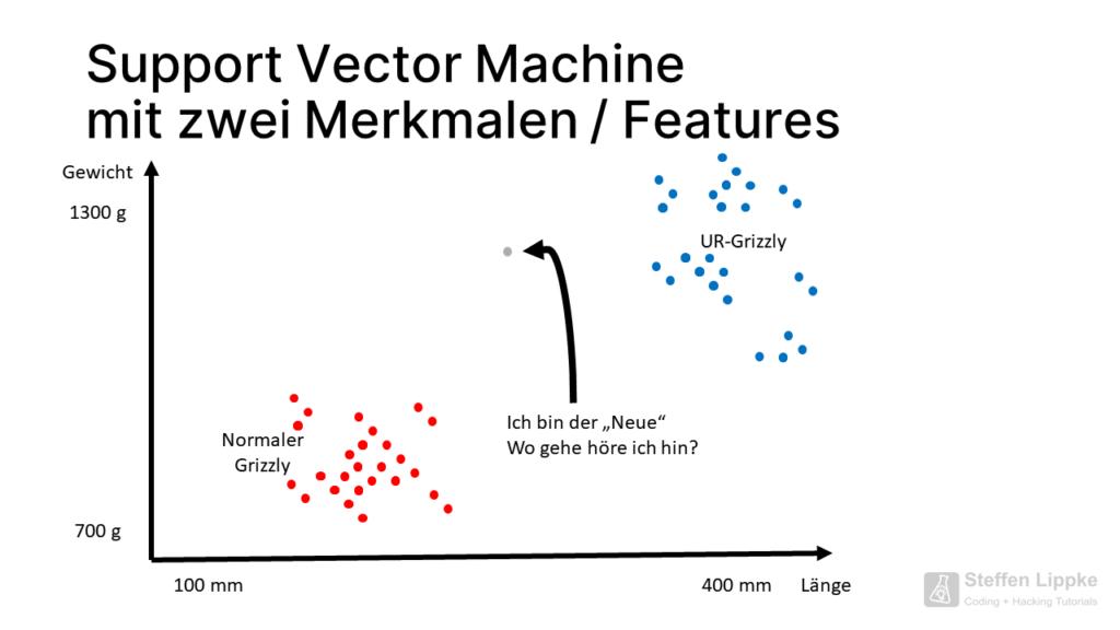 03 Klassfikation - Was ist eine Support Vector Machine Tutorial Steffen Lippke Coding Lab
