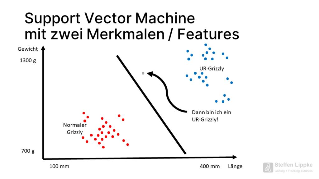 04 Trennungsgerade - Was ist eine Support Vector Machine Tutorial Steffen Lippke Coding Lab