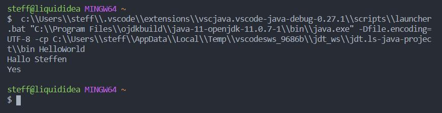 09 Ausgabe mit Namen - Java programmieren lernen GUIDE Anfänger Beginenr Steffen Lippke Coding Lab