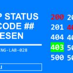 HTTP Status Code 200, 301, 403, 500  verstehen + Lösungsweg